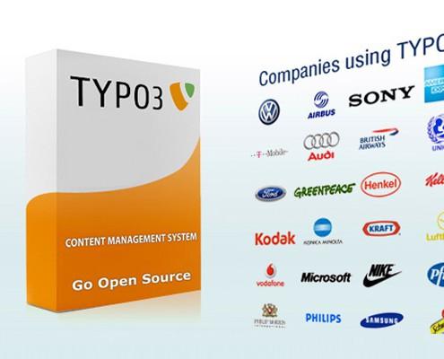 Companies using typo3